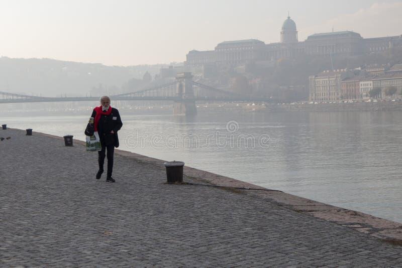 布达佩斯游人 库存照片
