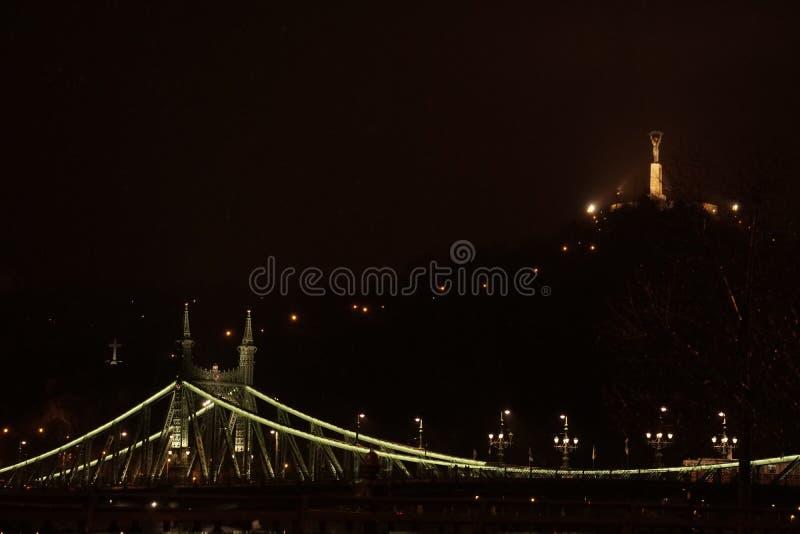 布达佩斯自由桥梁夜都市风景  免版税图库摄影