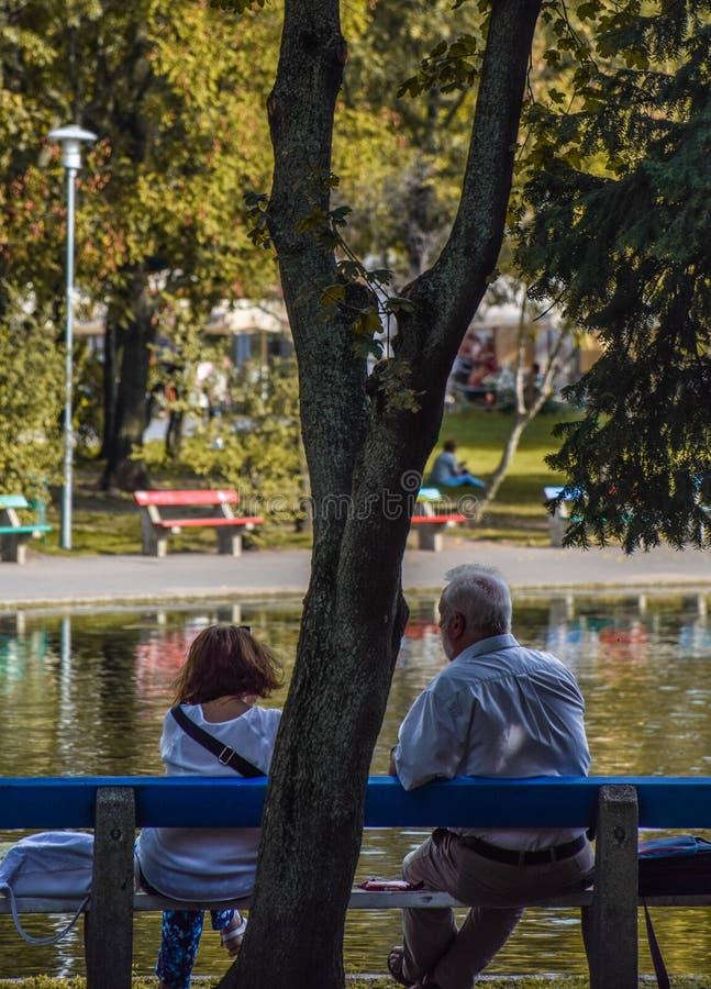 布达佩斯,匈牙利,2019年9月,13日-享受在湖前面的年长夫妇天在varolisget公园 免版税库存照片