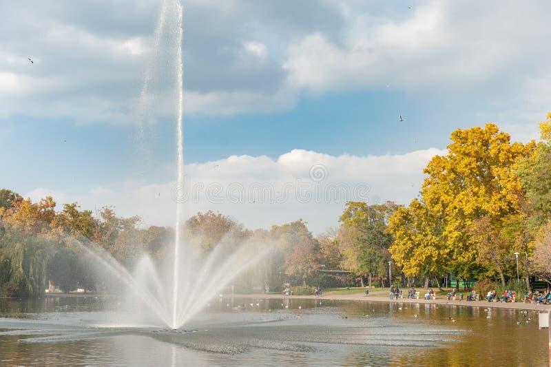 布达佩斯,匈牙利- 2015年10月26日:英雄在背景中摆正公园和喷泉与飞鸟 布达佩斯,匈牙利 免版税库存照片