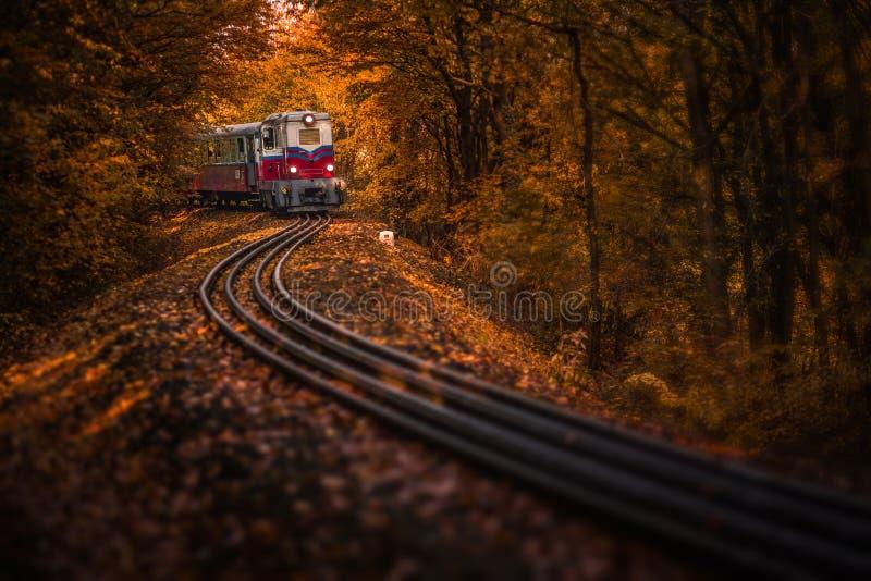 布达佩斯,匈牙利-有叶子的美丽的秋天森林和在轨道的老五颜六色的火车 库存照片