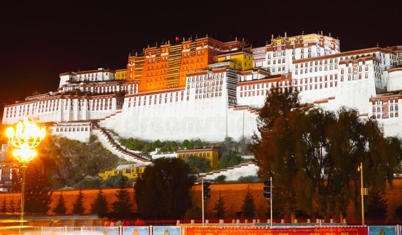 布达拉宫夜视图  库存照片