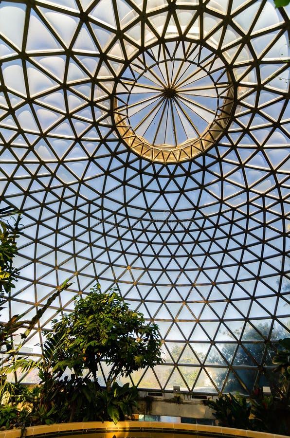 布里斯班植物园玻璃温室  免版税库存照片