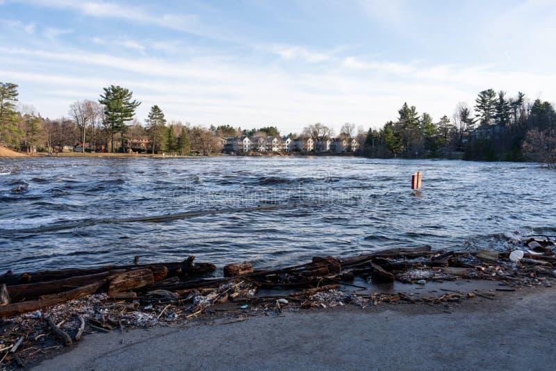 布雷斯布里奇,安大略/加拿大- 2019年4月25日:Muskoka河的记录设置的春天洪水布雷斯布里奇海湾公园的 库存图片