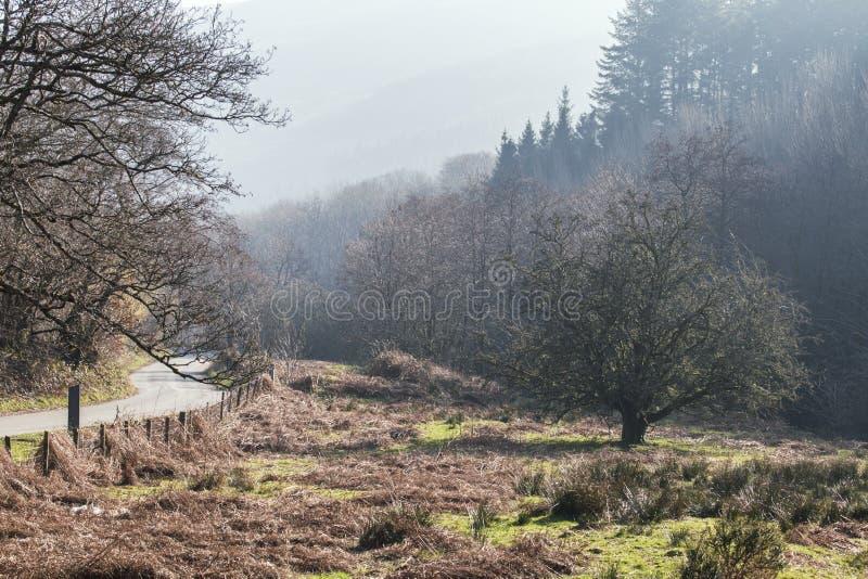 布雷肯比肯斯山风景早晨薄雾的 库存照片