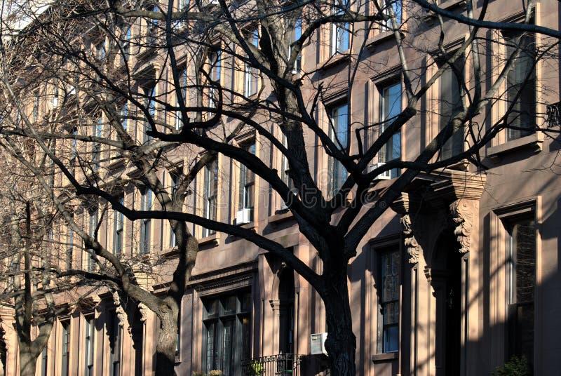 布鲁克林褐砂石 库存图片