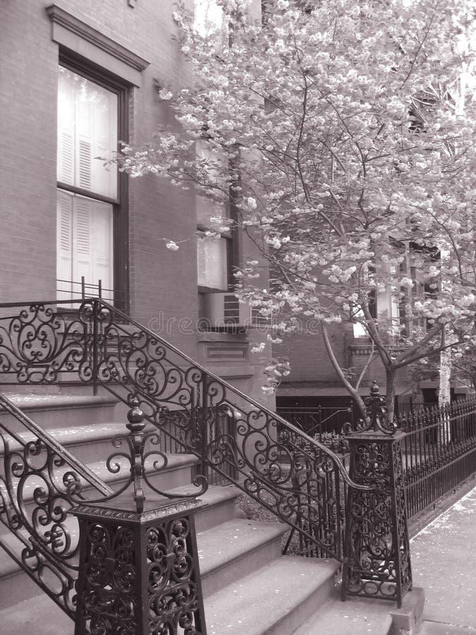 布鲁克林褐砂石 免版税库存照片