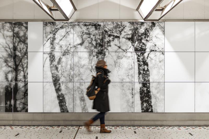 布鲁塞尔中央火车站,比利时 库存照片