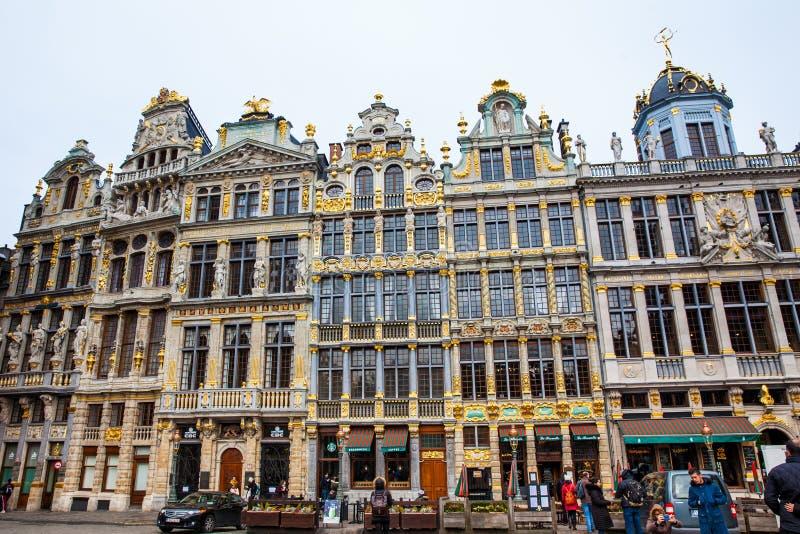 布鲁塞尔大广场的历史协会房子在布鲁塞尔 库存图片