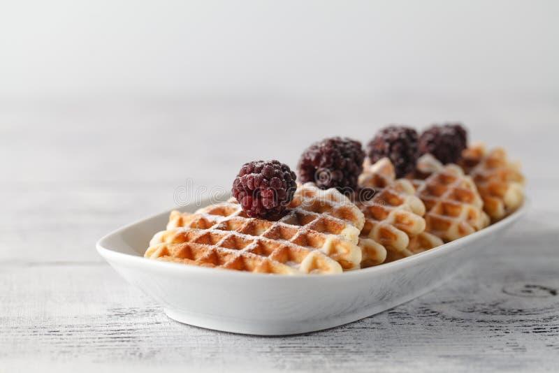 布鲁塞尔奶蛋烘饼用在白色板材的黑莓 免版税库存图片