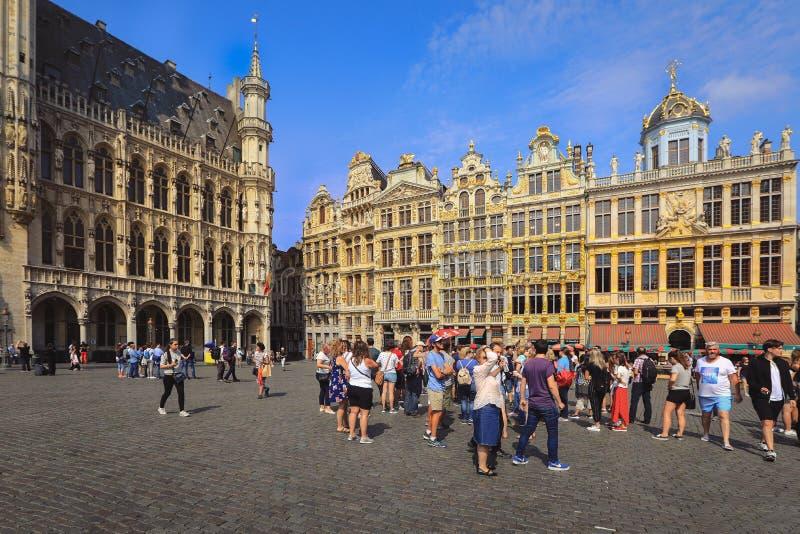 布鲁塞尔布鲁塞尔大广场广场,比利时 免版税图库摄影