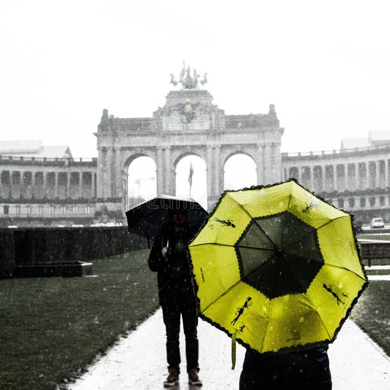 布鲁塞尔雨 免版税图库摄影