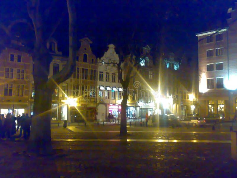布鲁塞尔,比利时- 2007年12月25日:建筑学和人们街道城市的 库存图片