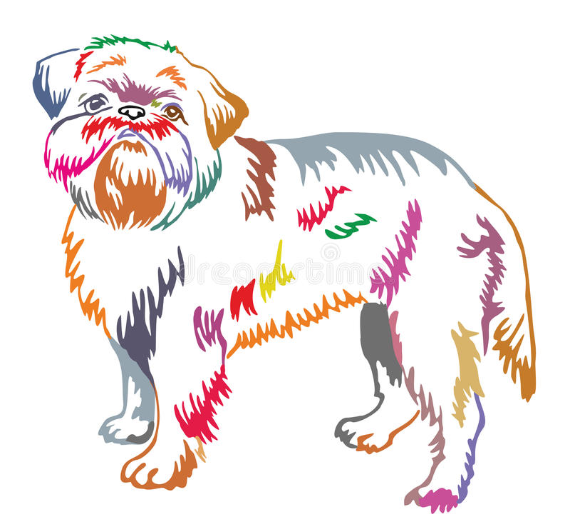 布鲁塞尔Griffon传染媒介五颜六色的装饰常设画象  向量例证