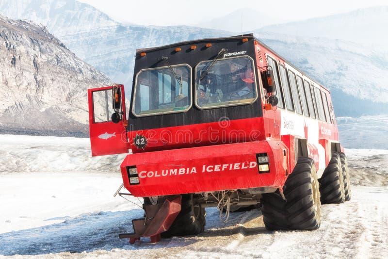 布鲁斯特冰探险家公共汽车Athabasca冰川 图库摄影
