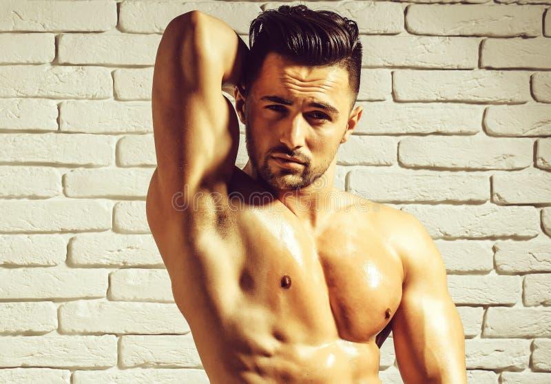 帅哥或肌肉强壮男子 免版税库存图片