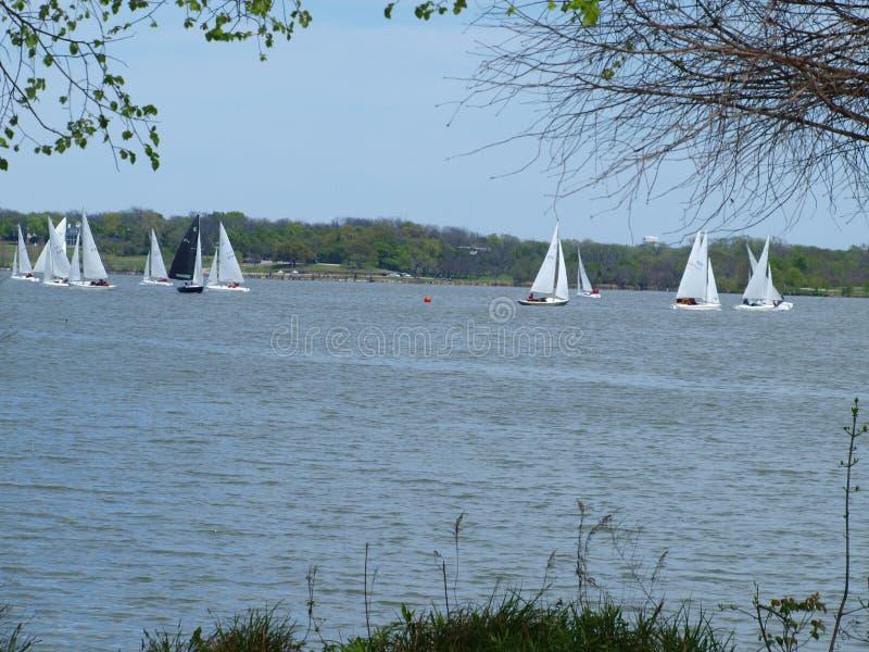 帆船俱乐部竞争或Regata 库存照片