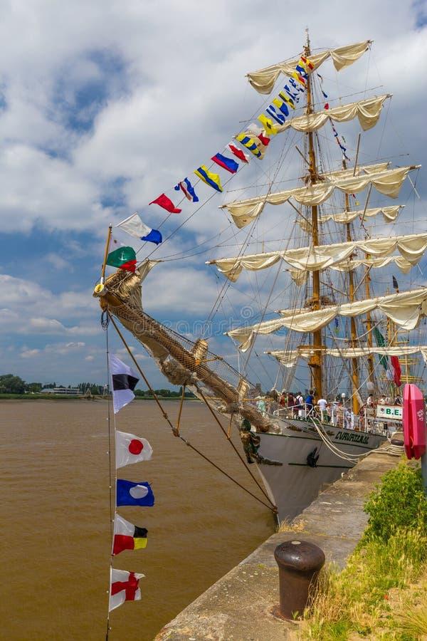 帆船Cuauhtemoc被看见的wth巨大的挥动的墨西哥国旗在高船期间的安特卫普赛跑2016年事件 库存图片