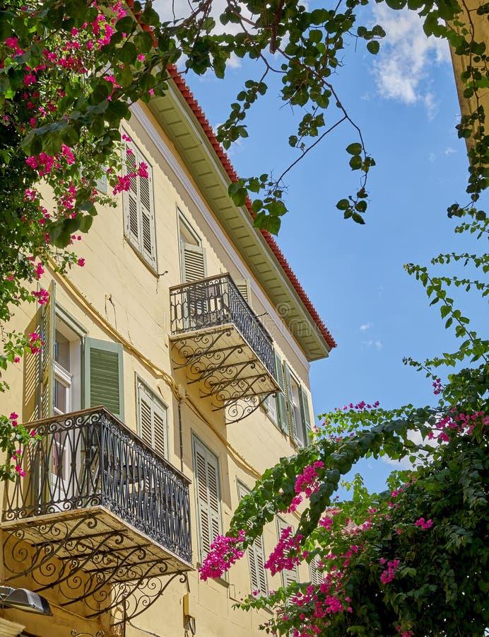 希腊、葡萄酒房子和花在蓝天下 库存照片