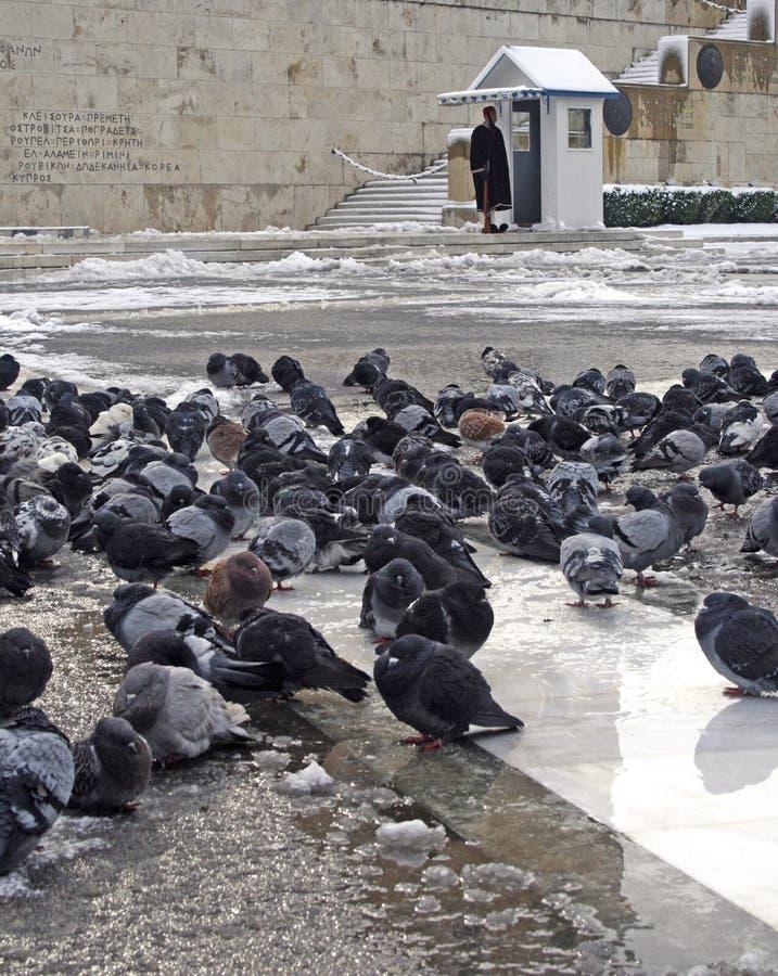 希腊命中雪风暴 免版税库存图片