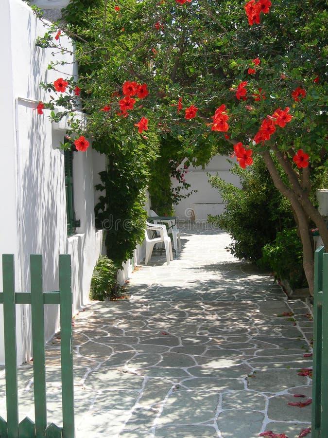 希腊海岛场面 免版税库存图片