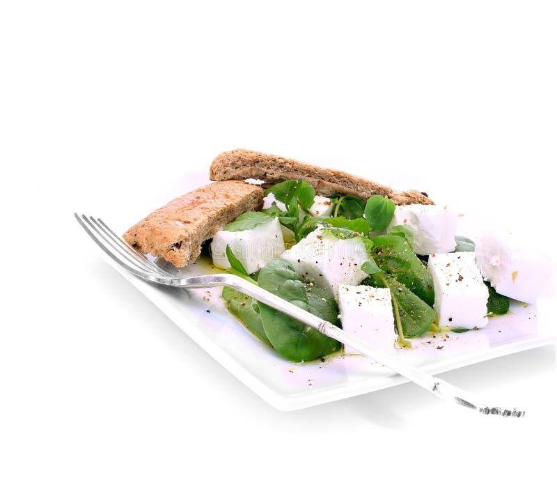 希腊白软干酪沙拉II 图库摄影