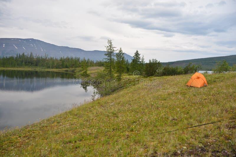 帐篷在寒带草原 免版税库存图片