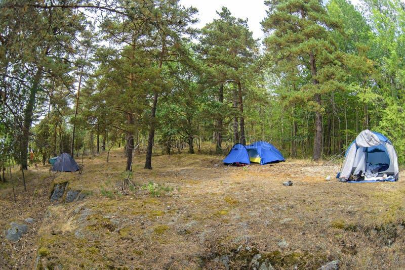 帐篷在森林和绿草里 离自然较近的旅行通过创造临时住处 图库摄影