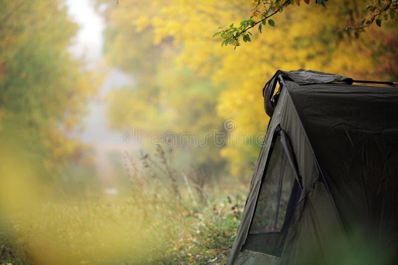 帐篷在森林 免版税库存图片
