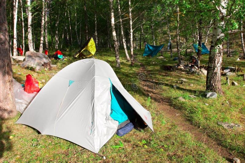 帐篷森林 库存照片