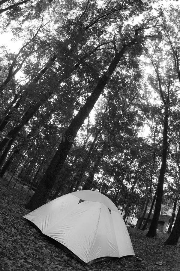 帐篷白色 免版税库存照片