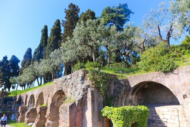 帕勒泰恩,罗马 库存照片