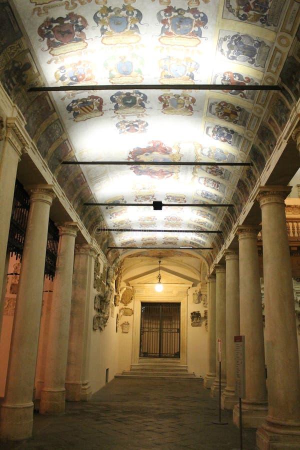 帕多瓦市在意大利,帕多瓦 库存照片