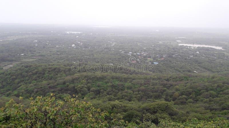 帕尔内拉valsad的古杰雷特印度'valsad beauti小山森林' 免版税库存照片