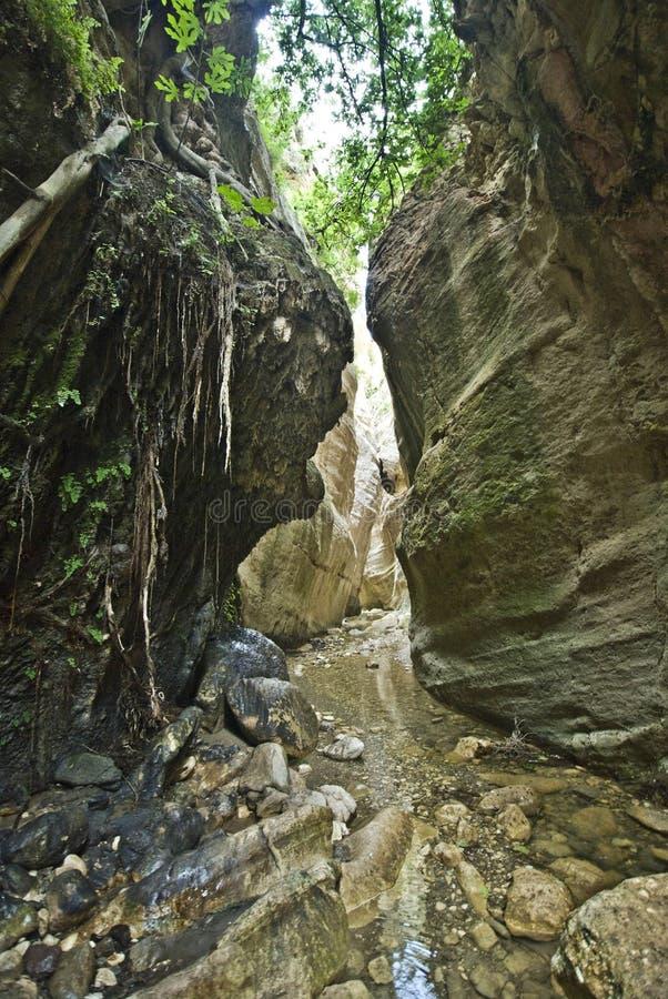 帕福斯的,塞浦路斯Avakas峡谷 免版税图库摄影
