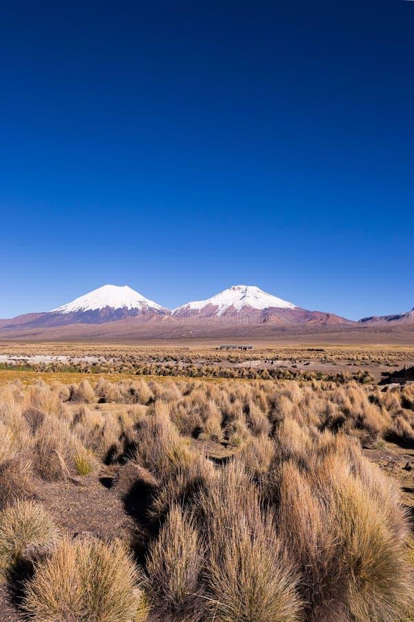 帕里纳科塔火山和Pomerade火山 在A的高安地斯山的风景 库存照片