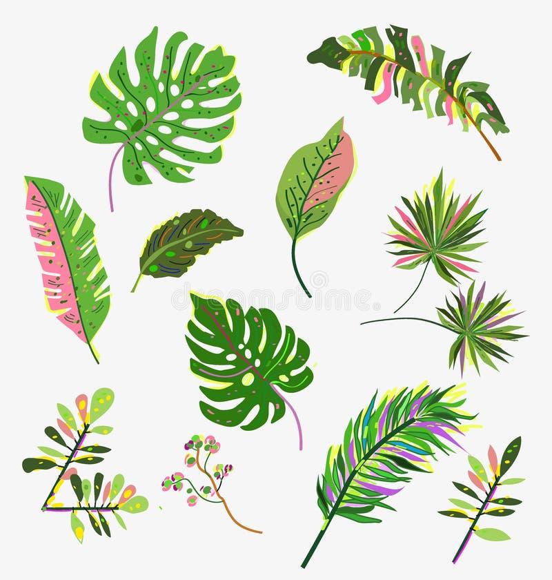 带亮手绘设计的热带叶片 矢量插图 免版税库存图片