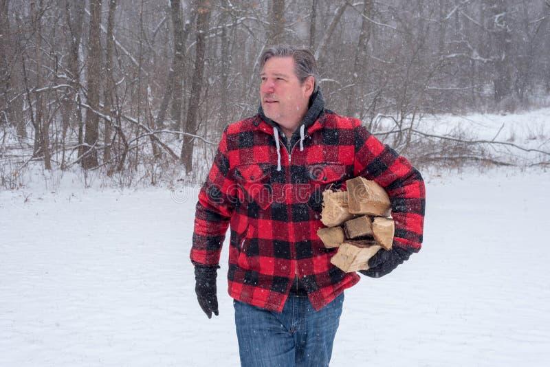 带来在冷气候的木柴的人 库存图片