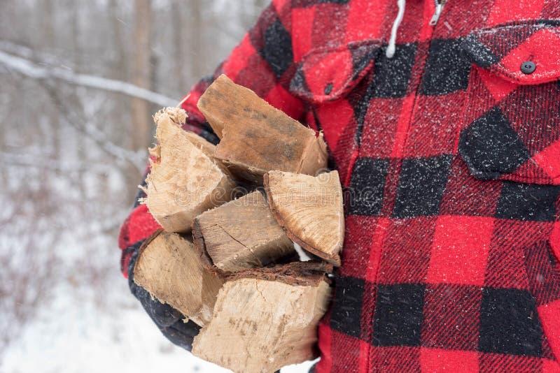 带来在雪风暴的木头的格子花呢披肩外套的人 免版税库存照片