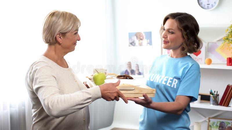 带来年迈的夫人的,社会支持协助的年轻志愿者早餐盘子 免版税图库摄影