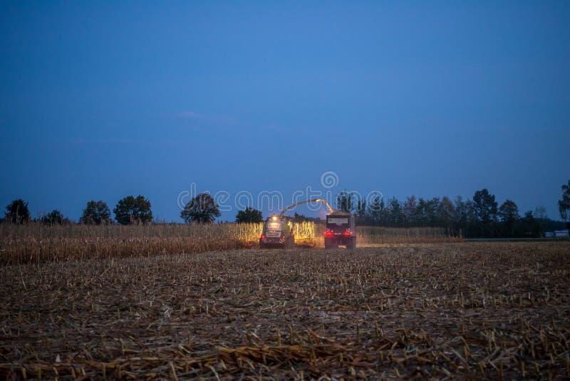 带来玉米庄稼的Farners  库存照片