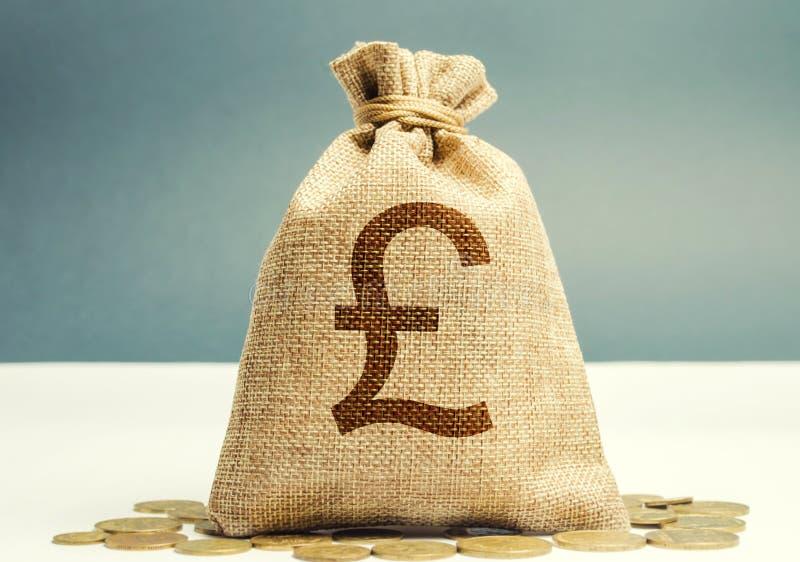 带硬币的钱袋 利润和财务概念 预算、薪金、收入 资金和储蓄的分配 英镑 库存图片