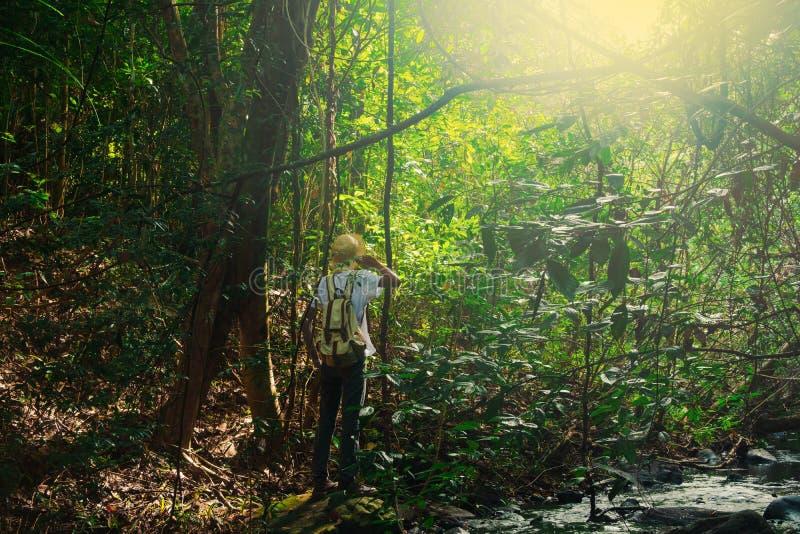 带背包徒步的旅行者旅行生活方式概念森林背景暑假在热带户外 库存照片