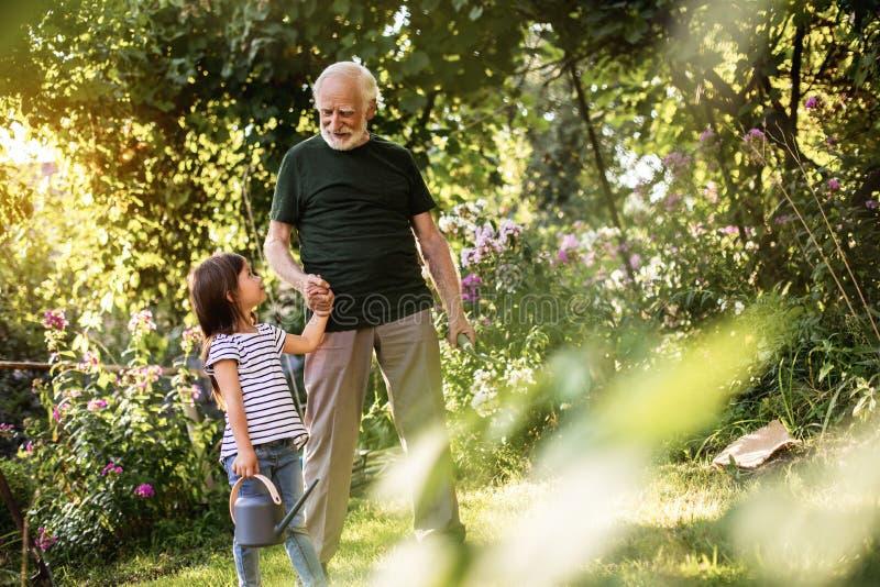 带领他的孙女的祖父在庭院里工作 图库摄影