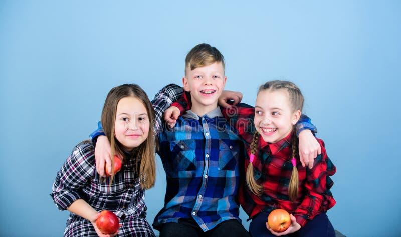 带领卓有成效的生活 拿着红色苹果的小孩 一起吃苹果的小小组孩子 逗人喜爱 库存图片