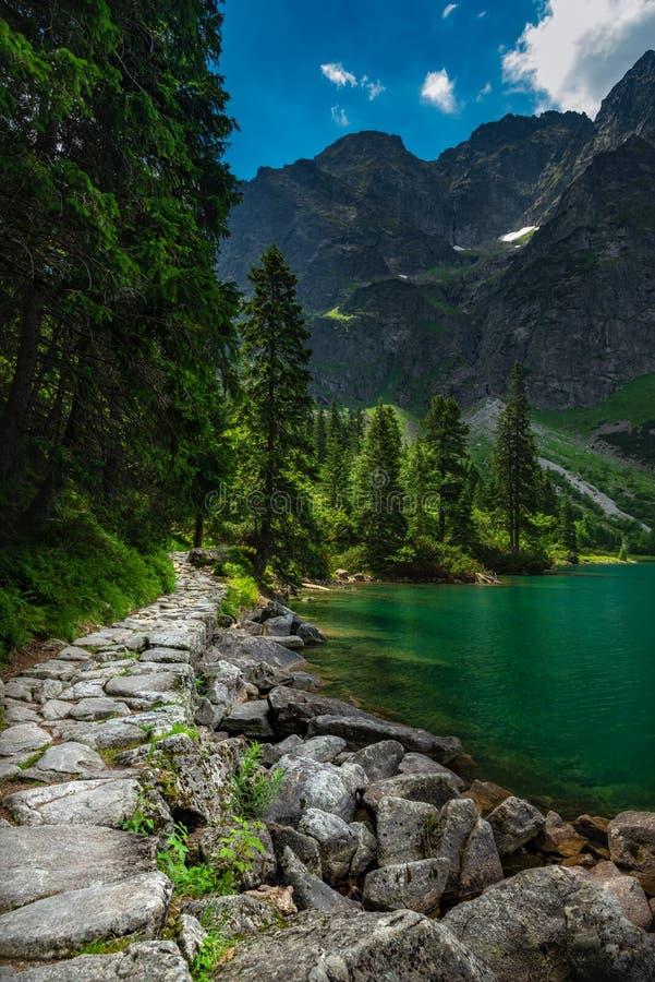 带领往高山的岩石道路 免版税库存图片