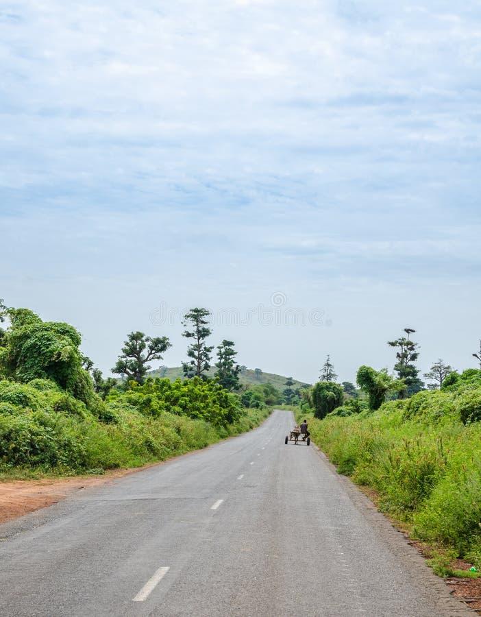 带领通过有驴货车和醉汉植被的,非洲农村塞内加尔的长的沥青乡下公路 免版税库存图片