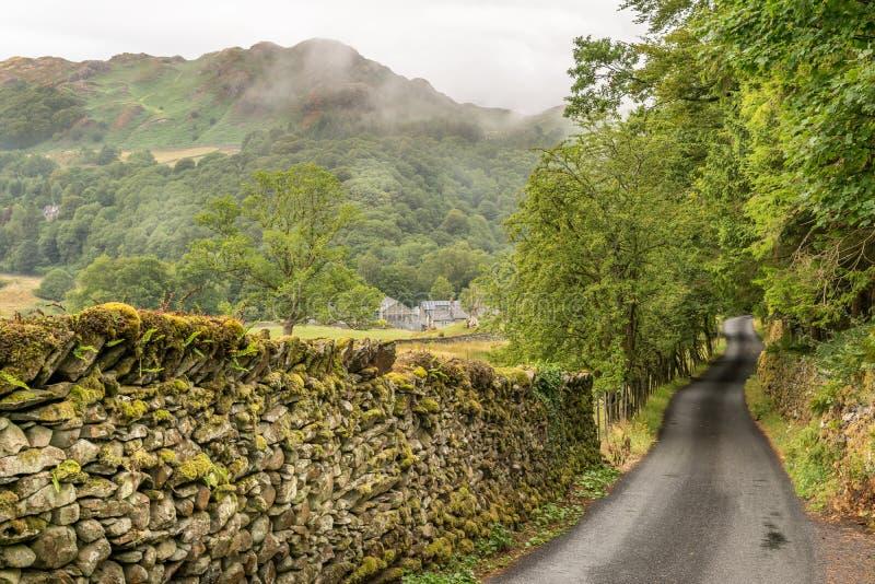 带领通过领域的道路往森林和山 库存图片