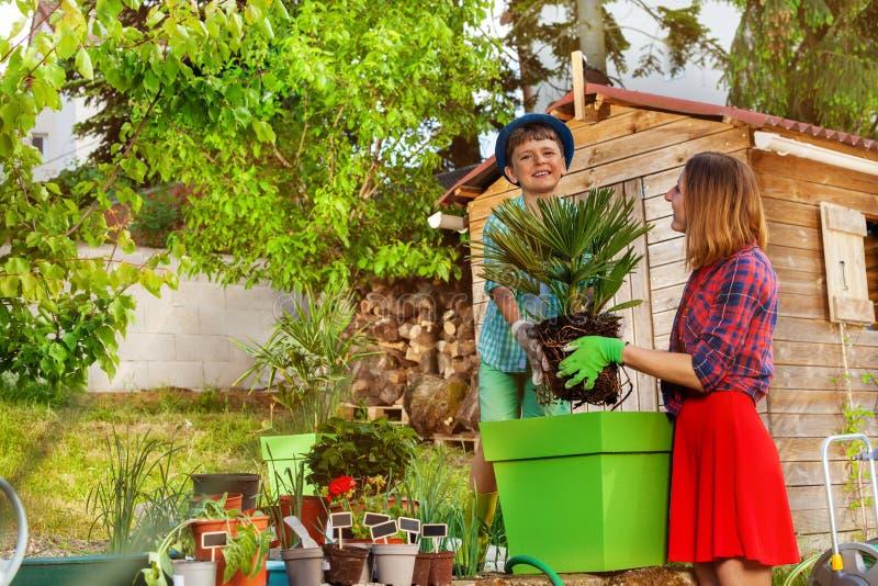 帮助他的母亲的愉快的男孩在庭院里 免版税库存图片
