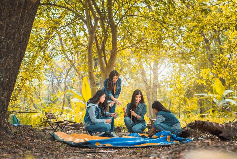 帮助修造的小组年轻亚裔妇女帐篷 库存图片